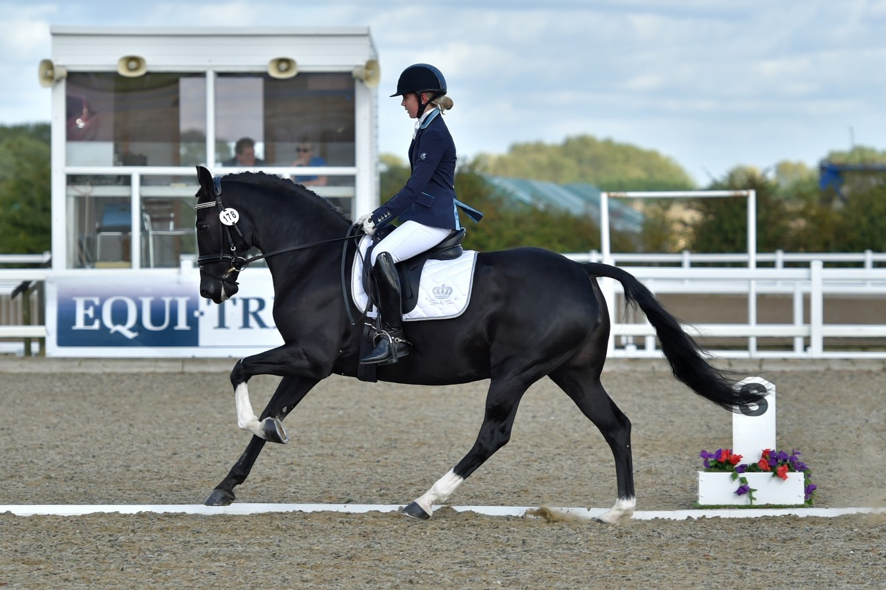 Arena UK awarded the British Dressage Pet Plan Summer Area Festival Championships!